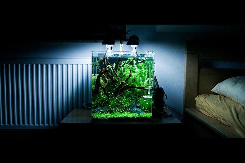 dennerle nano cube 10l led beleuchtung nano cube 30l. Black Bedroom Furniture Sets. Home Design Ideas
