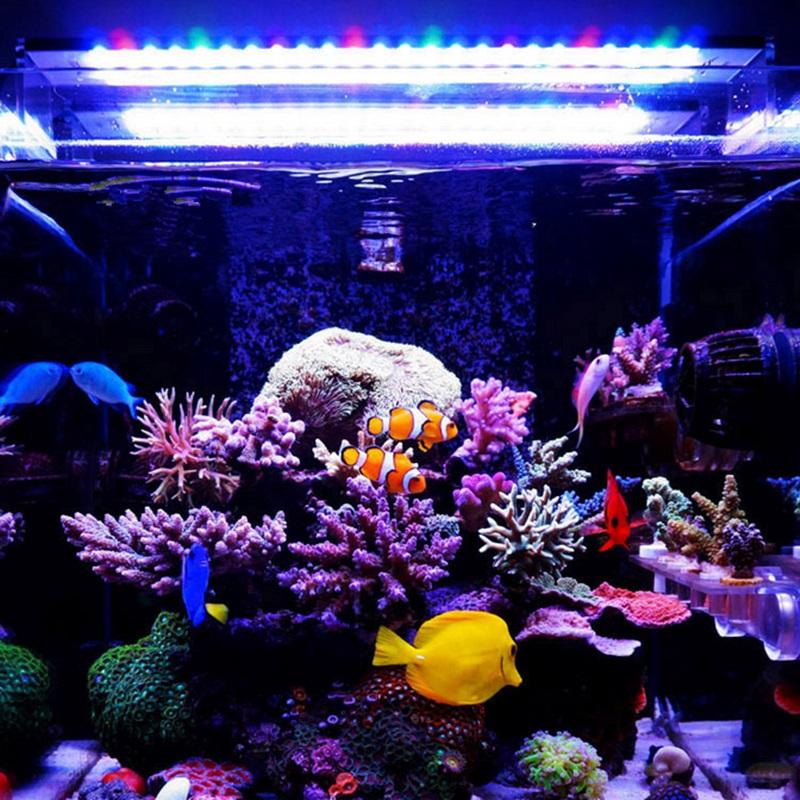 http://rostlinna-akvaria.cz/eshop/obrazky/5175-chihiros_1.jpg