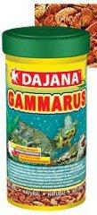 Dajana Gammarus zlatý 100ml