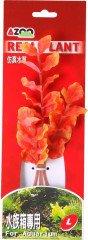 Azoo rostlina Marcandra (orange) 20 cm AZ98017