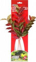 Azoo rostlina Marcandra 30 cm AZ98019