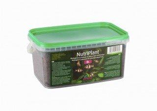 Diversa NutriPlant 3l