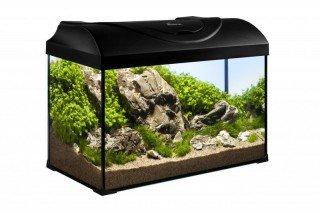 Diversa akvarijní set Startup 50 černý 37,5l LED