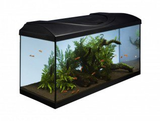 Diversa akvarijní set Startup 80 černý 112l