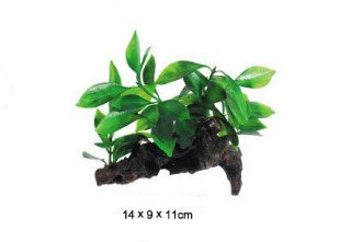 UP Aqua plastová rostlina Anubias na kořeni 5819162
