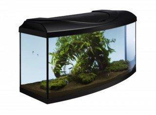 Diversa akvarijní set Startup 80 černý vypouklý 112l LED