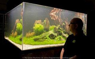 Úžasné 1700L přírodní akvárium + VIDEO