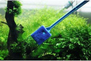 Jak na čištění, odkalování, výměnu vody akvária