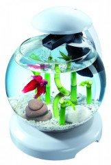 Tetra Cascade Glode LED akvarijní set 6,8 l bílý