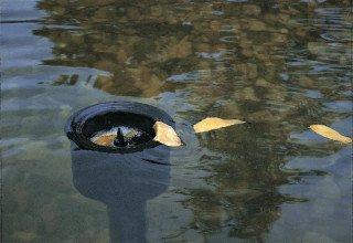 Jak vybrat jezírkový skimmer a jak jej zapojit