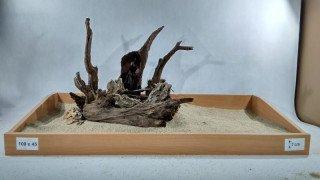 Layout pro akvária o délce 100cm, (ID 3307)