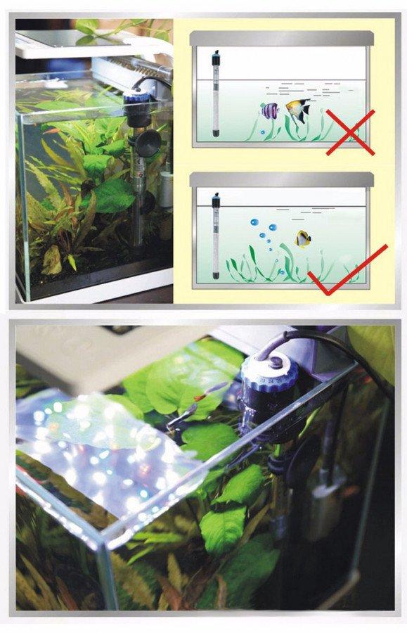 https://www.rostlinna-akvaria.cz/upload/25743-1108396658.jpg