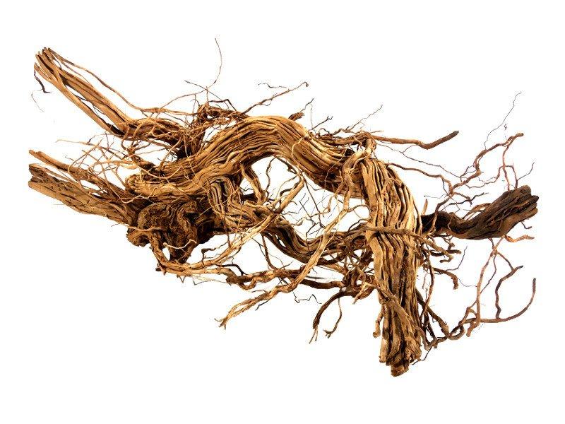 Dragon Wood XXXL 90-120cm 1 kus