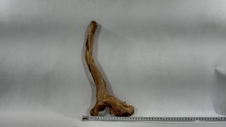 Red moor wood 460g (ID Z00502)