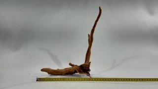 Red moor wood 1910g (ID Z00522)