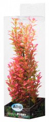ATG Premium rostlina Střední (26-32cm) 406