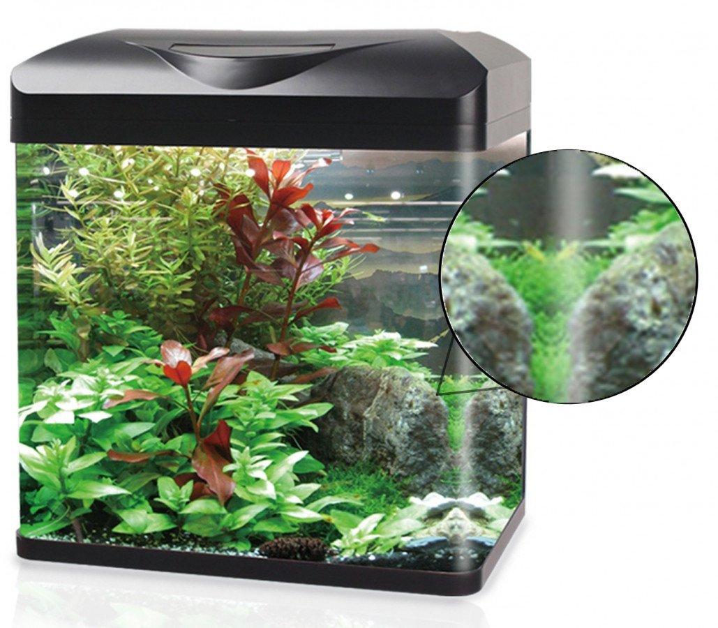 https://www.rostlinna-akvaria.cz/upload/28078-0902192641.jpg