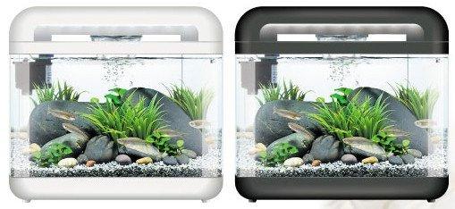 https://www.rostlinna-akvaria.cz/upload/28275-2002369295.jpg