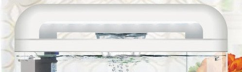 https://www.rostlinna-akvaria.cz/upload/28278-2002407755.jpg