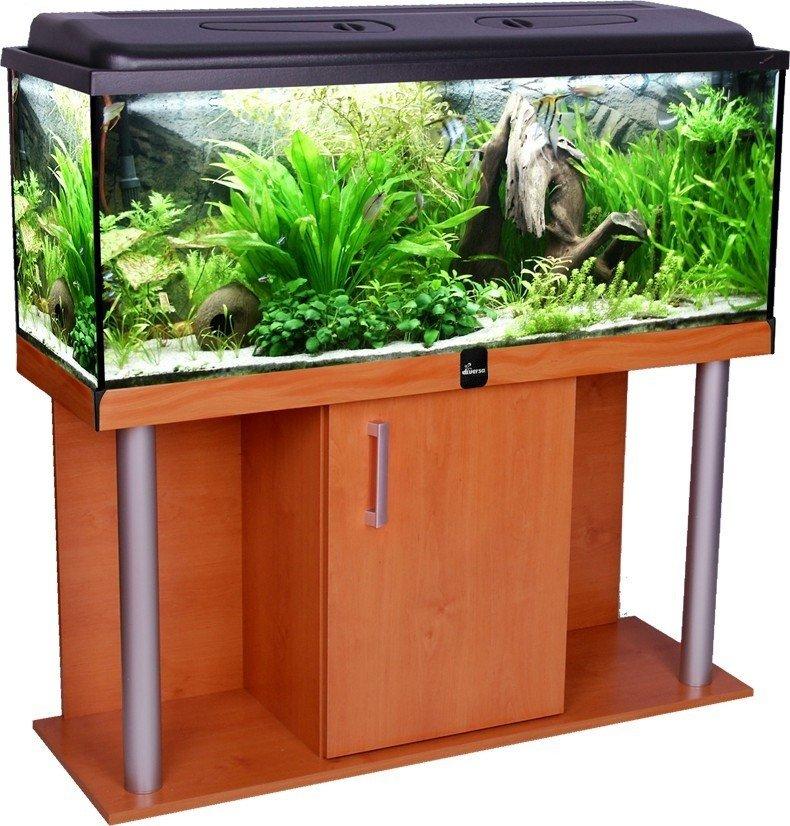 https://www.rostlinna-akvaria.cz/upload/30229-1405044032.jpg