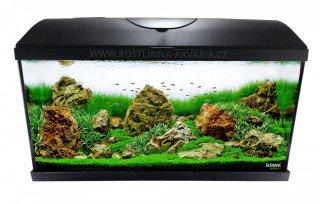 Jak vybrat akvárium nebo akvarijní set