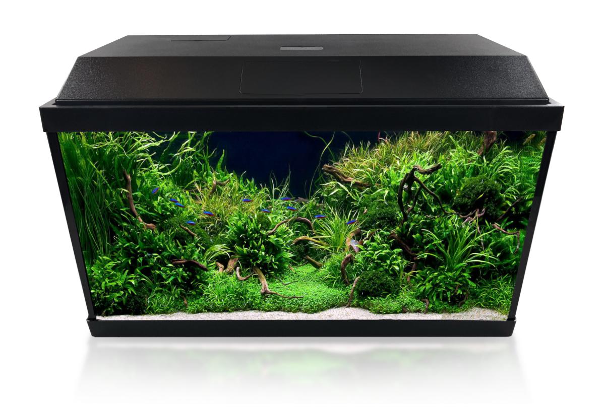 INVITAL LED akvarijní set 60 litrů s vnitřním filtrem a topítkem