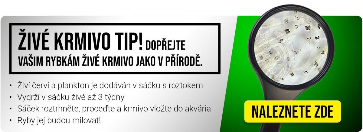 https://www.rostlinna-akvaria.cz/administrace/upload/43519-1007048973.jpg