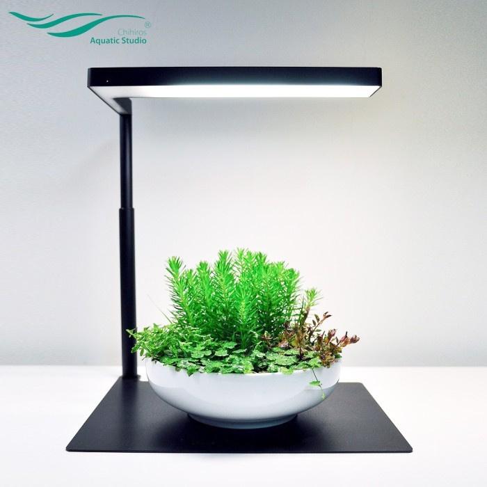 https://www.rostlinna-akvaria.cz/upload/47593-1211377603.jpg