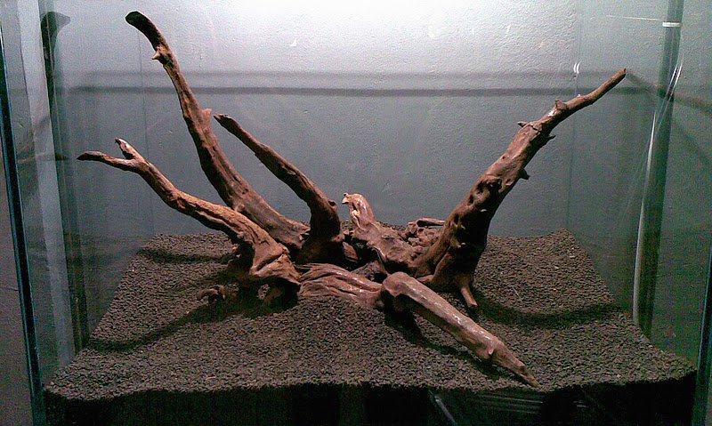 kořen do akvaria
