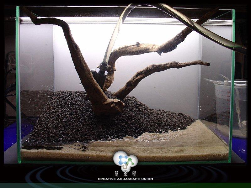 nature aquarium setup